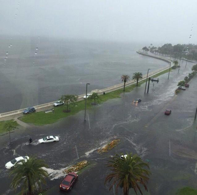 When it rains a lot, Bayshore Blvd. in Tampa usually takes a pounding.  This pic was taken by Donn Scott Jr.